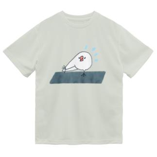 ストレッチをがんばる文鳥ちゃん Dry T-shirts