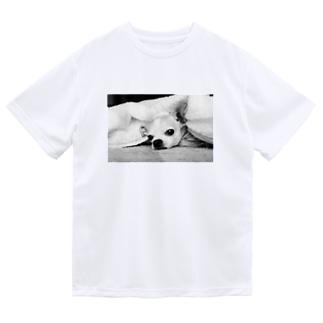 モノクロチワワ(アンニュイ1) Dry T-Shirt