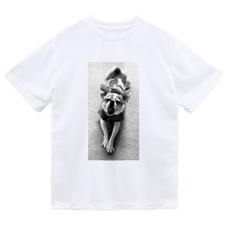 モノクロチワワ(あくび) Dry T-Shirt
