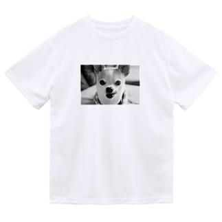 モノクロチワワ(ぺろんちょ) Dry T-Shirt