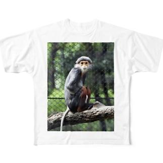 アカアシドゥー師匠 Full graphic T-shirts