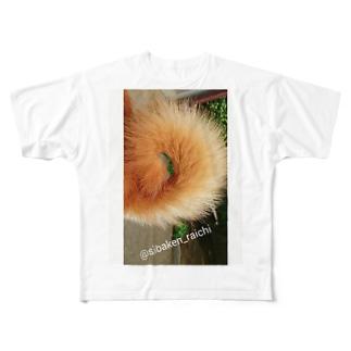 柴犬ライチ⑥ Full graphic T-shirts