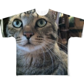猫T Full graphic T-shirts