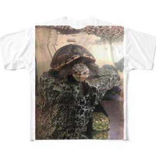 エビが欲しいお顔(コロン) Full graphic T-shirts