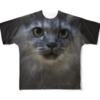 ロビン Full graphic T-shirts