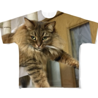 プラプラアポロ Full graphic T-shirts