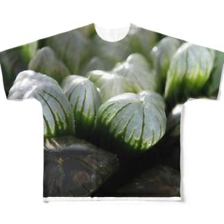 ハオルチア オブツーサ系1「ハオルチア クーペリー トルンカタ MBB386」 Full graphic T-shirts