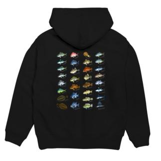 Saltwater fish_1W Hoodies