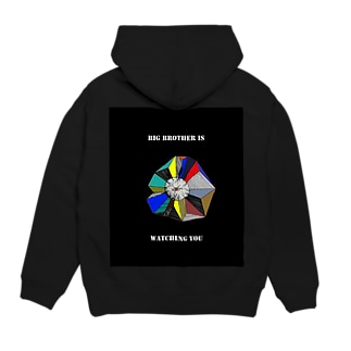 BIG BROTHER IS WATCHING YOU  Hoodies