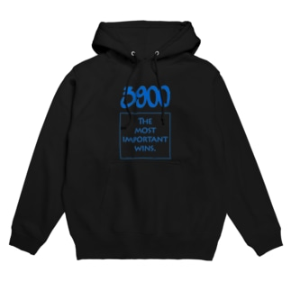 POINTS - 3900 Blue Hoodies