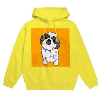 シーズー犬02 フーディ