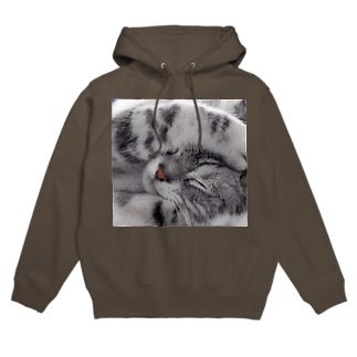 猫 フーディ