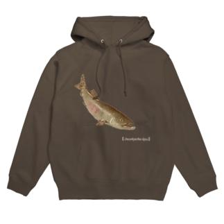鮭 Hoodies