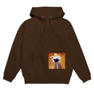 犬 Hoodies