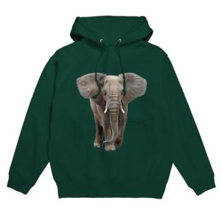 アフリカゾウ Hoodies