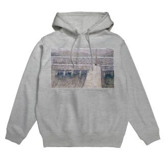 Back that I have seen Hoodies