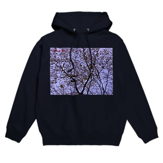 桜 サクラ cherry blossom DATA_P_108 Hoodies
