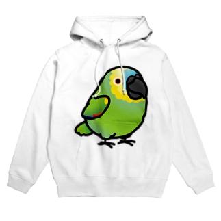 Chubby Bird ボウシインコ フーディ