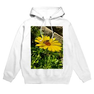 蜂と花 Hoodies