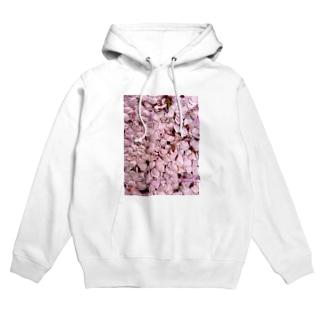 いつかの桜 Hoodies