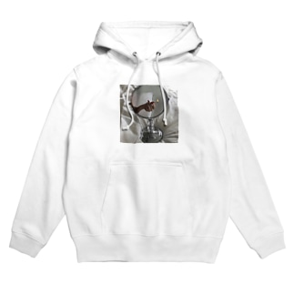 Not disappear. Hoodies