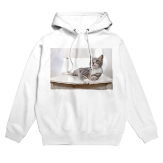 cat_20190506_8165 Hoodies