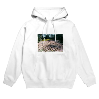 Only  not Lonely Hoodies