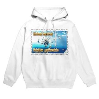 テングダイ★白地の製品だけご利用ください!! Striped boarfish★Recommend for white base products only !!  Hoodies