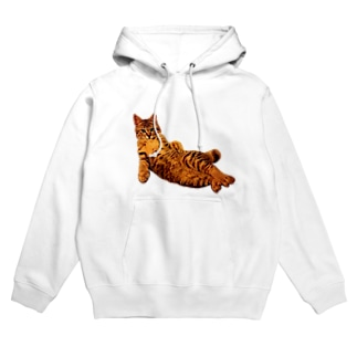 Elegant Cat Hoodies