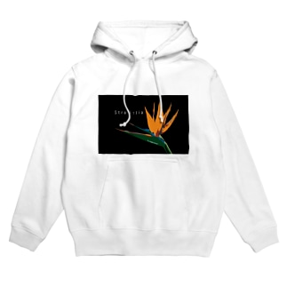 To a bright future. Hoodies