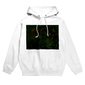 hiroki-naraのススキ japanese pampas grass Hoodies