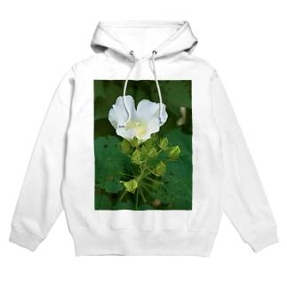 芙蓉 DATA_P_132 Confederate Rose ハスの花の古名 Hoodies