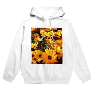 ディモルフォセカの花 Hoodies