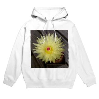 サボテンの花 Hoodies
