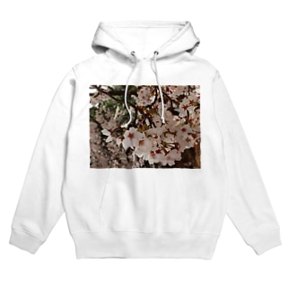 桜 サクラ cherry blossom DATA_P_152 春 spring Hoodies