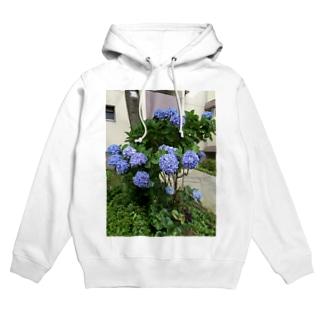 yurzukiの紫陽花 Hoodies