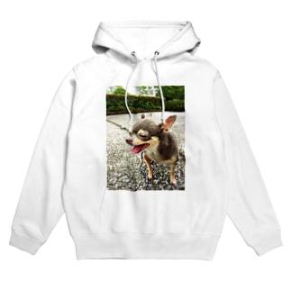 Happy         Chihuahua Hoodies