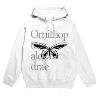 Ornithoptera alexandrae Hoodies