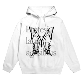 Protesilaus agesilaus Hoodies