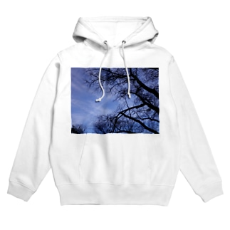 Deep forest2 Hoodies