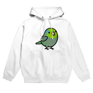 Cody the LovebirdのChubby Bird マメルリハ Hoodies