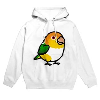 Chubby Bird シロハラインコ Hoodies