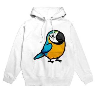 Chubby Bird ルリコンゴウインコ Hoodies