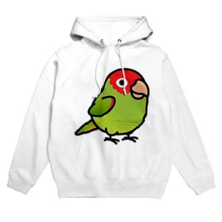 Chubby Bird オナガアカボウシインコ Hoodies