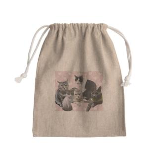 猫 Kinchaku