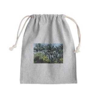 ハワイの木 Kinchaku