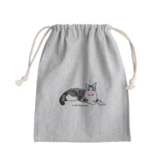 ネクタイ猫ちゃん Kinchaku