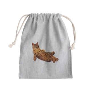 Elegant Cat 2 Kinchaku