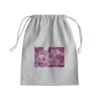 永遠の桜 -思いを託して- Kinchaku