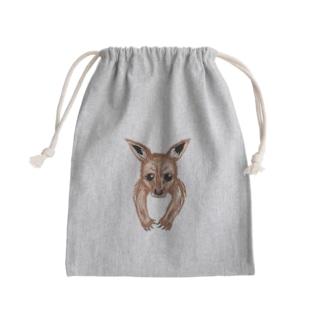 袋の中からカンガルーの赤ちゃん Kinchaku